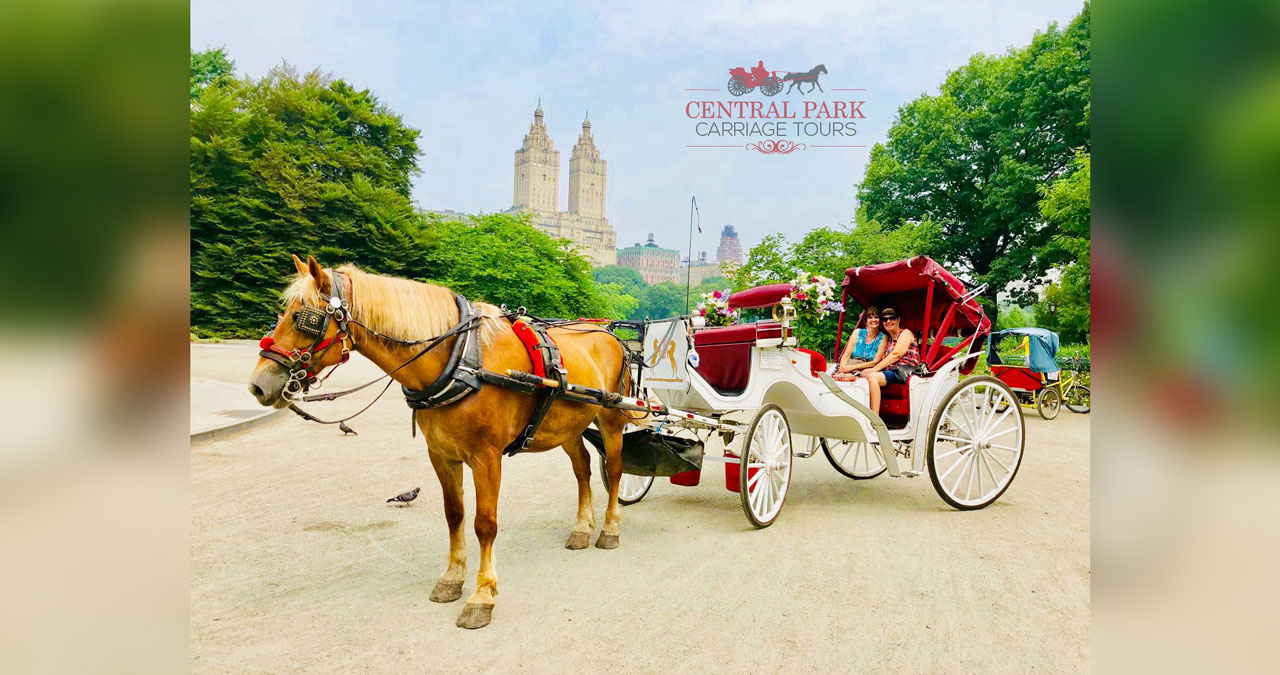 Central Park Carriage Tours   NYC Horse & Carriage Tours