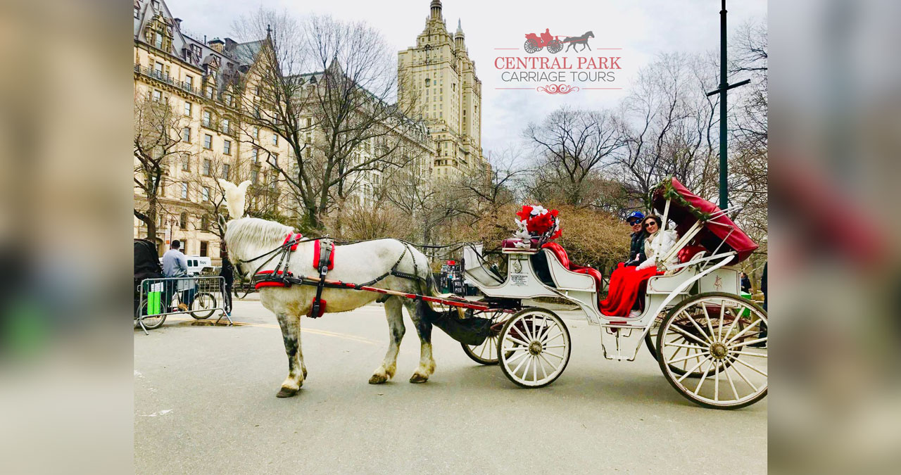 Central Park Carriage Tours | NYC Horse & Carriage Tours